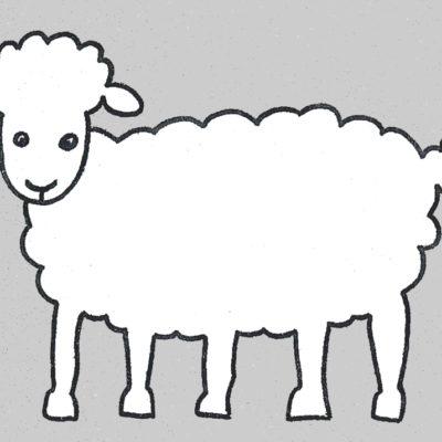 mouton-5-pattes
